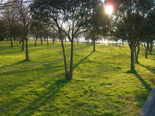 Colindres Park