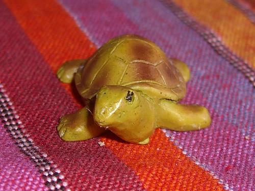 Cake Tortoise