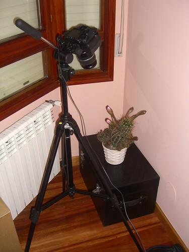 Cactus Cam Productions - Studio B