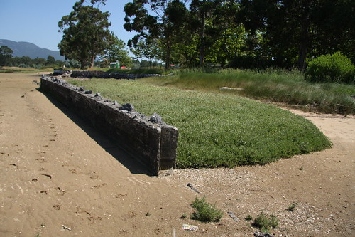 Wall protecting grass