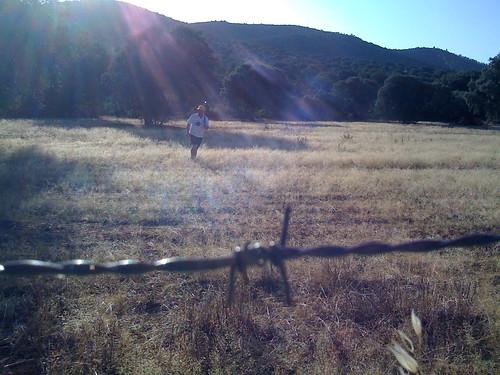 Hare Hunting Juan