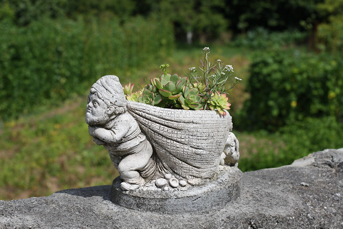 Gnome Flower Pot