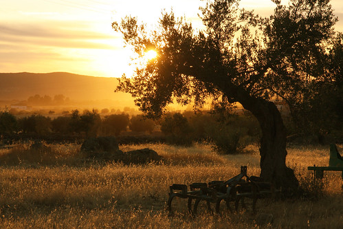 Extremadura Sunset (not HDR)