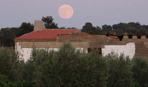 Looming Moon