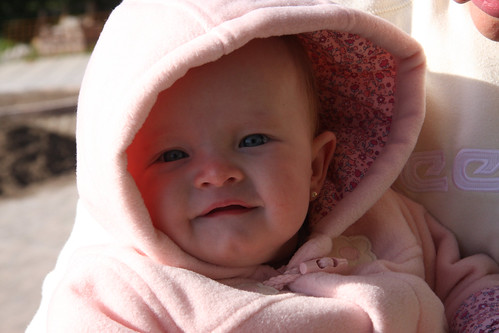 Hooded Nora
