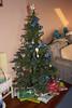 Christmas Tree 2009