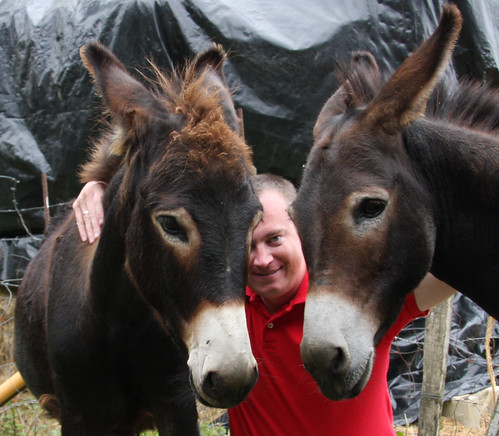 Erik with Donkeys