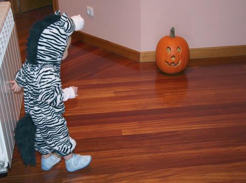 Nora Zebra Halloween Costume