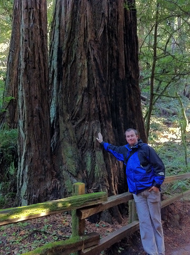 Muir Woods - Redwoods, Erik