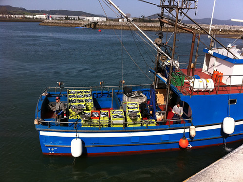 Mackerel Fishing Boat