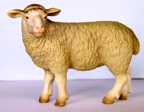 I like Ewe