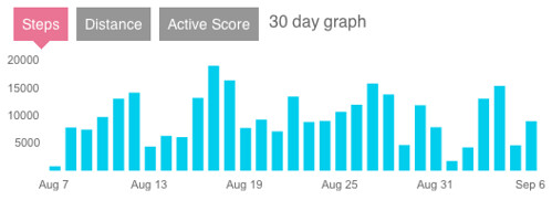 Fitbit 30-Day Graph