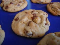 Cookie, Anyone