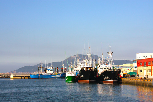 Fishing boats in Colindres Harbor