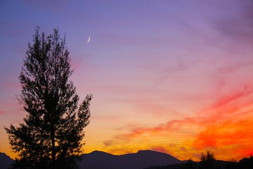 Sunset Sliver