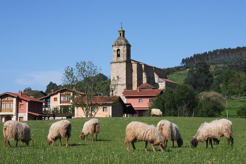 San Juan Church and Sheep - Colindres de Arriba