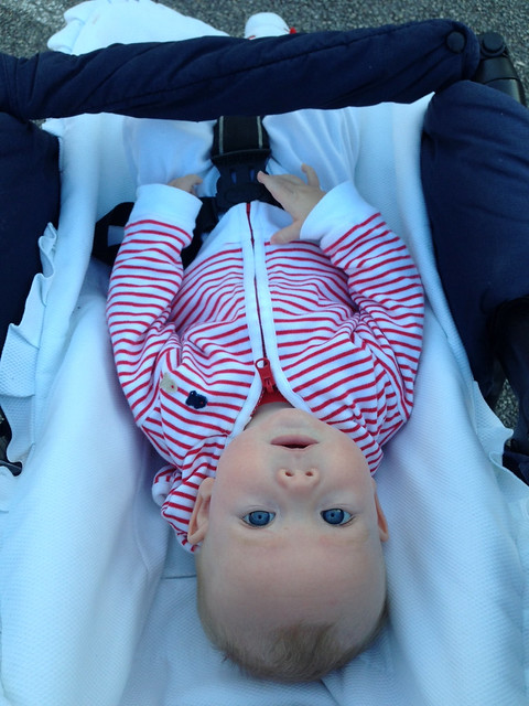 Upside-down Ian